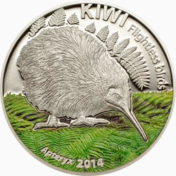 CK1413_Flightless_birds_kiwi_plain_reverse.jpg