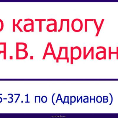 таблица-5к37.jpg